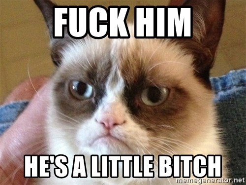 Angry Cat Meme - Fuck Him He's a Little Bitch