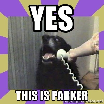Yes, this is dog! - Yes This Is parker