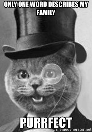 Monocle Cat - oNLY ONE WORD DESCRIBES MY FAMILY PURRFECT