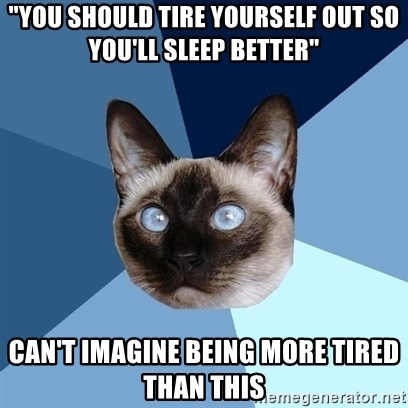 """Chronic Illness Cat - """"You should tire yourself out so you'll sleep better"""" Can't imagine being more tired than this"""