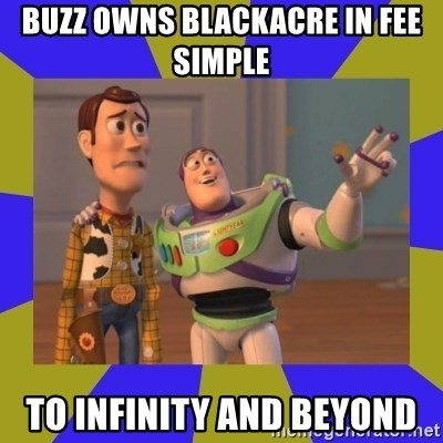 buzz lightyear 2 - Buzz owns blackacre in fee simple to infinity and beyond