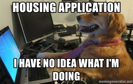 I have no idea what I'm doing - Dog with Tie - HOUSING application I have no idea what i'm doing