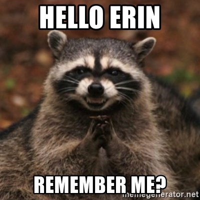 evil raccoon - hello erin Remember me?