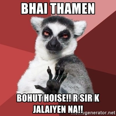 Chill Out Lemur - BHAI THAMEN bohut hoise!! r sir k jalaiyen na!!