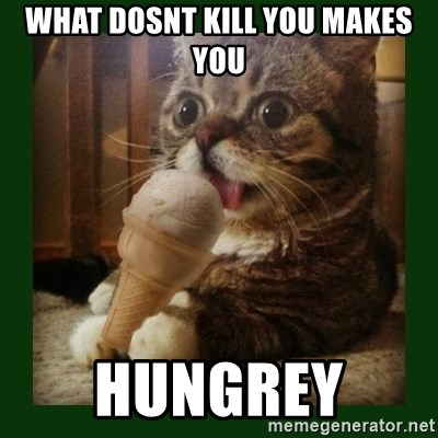 lil bub - what dosnt kill you makes you hungrey