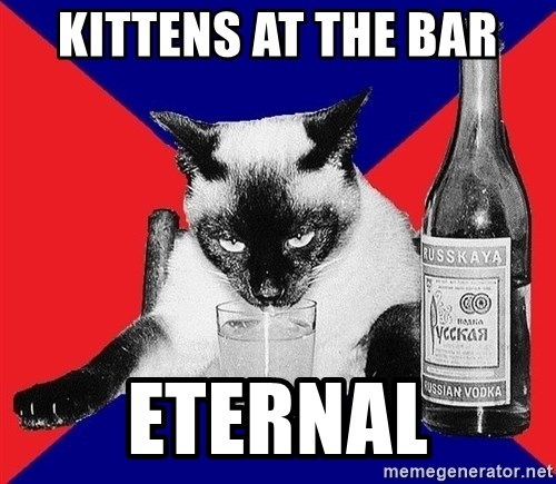 Alco-cat - kittens at the bar Eternal