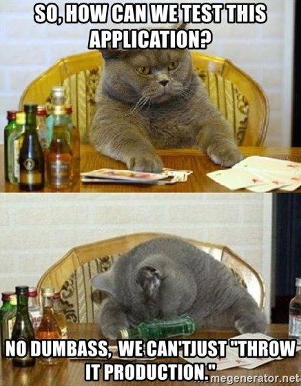 """Poker Cat - So, how can we test this application? NO dumbass,  We can'tJust """"Throw it production."""""""