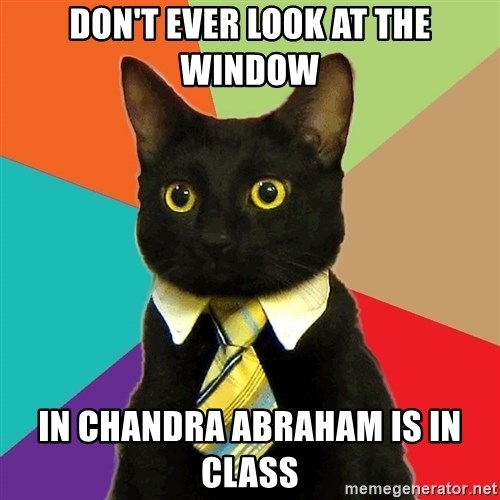 Business Cat - don't ever look at the window in chandra abraham is in class