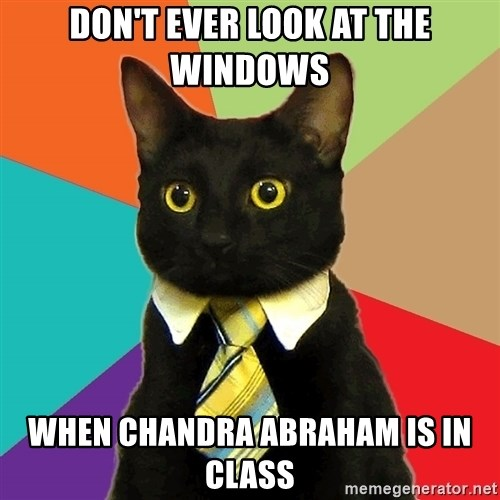 Business Cat - dOn't ever look at the windows when chandra abraham is in class