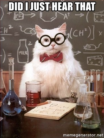 Chemistry Cat - DId I just hear that