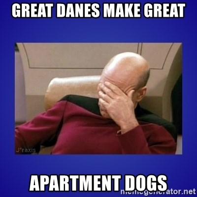 Picard facepalm  - Great Danes make great Apartment dogs