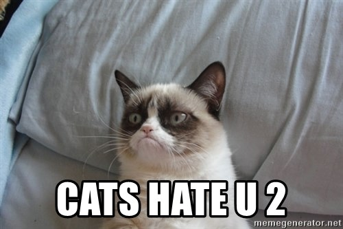 Grumpy cat good -  Cats hate u 2