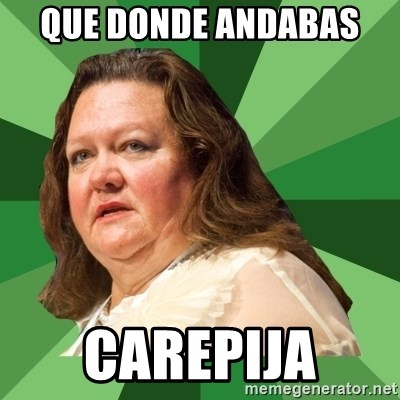 Dumb Whore Gina Rinehart - QUE DONDE ANDABAS  CAREPIJA