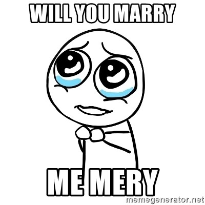 pleaseguy  - WILL YOU MARRY ME MERY