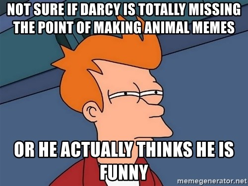 Futurama Fry - Not sure if Darcy is totally missing the point of making animal memes Or he Actually thinKs he is funny