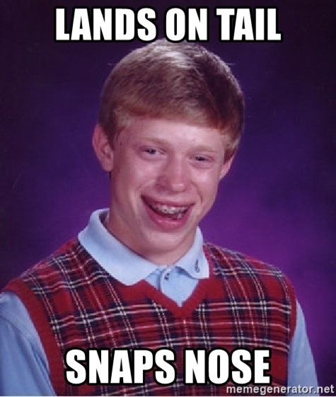 Bad Luck Brian - lands on tail snaps nose