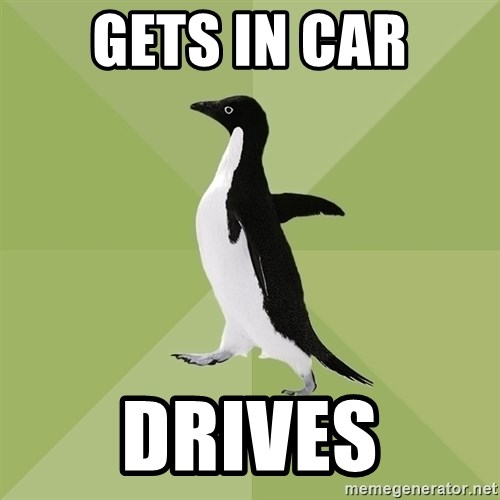 Socially Average Penguin - gets in car drives