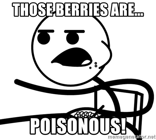 Cereal Guy - those berries are... poisonous!