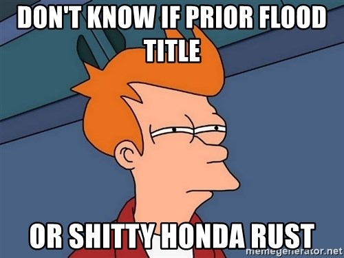 Futurama Fry - Don't know if prior flood title or shitty honda rust