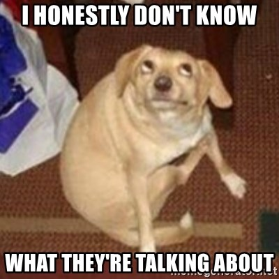 Oh You Dog - I HOnestly don't know what they're talking about