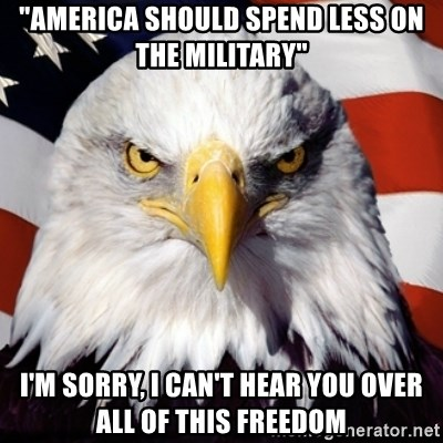 "Freedom Eagle  - ""America should spend less on the military"" I'm sorry, I can't hear you over all of this freedom"