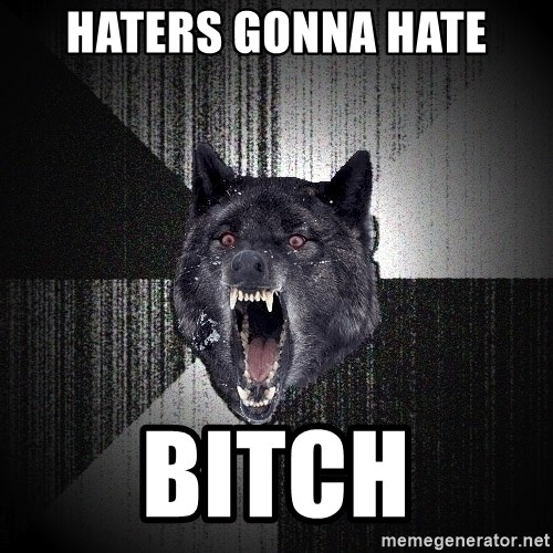 Insanity Wolf - Haters gonna hate bitch