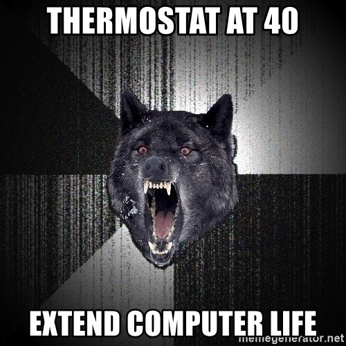 Insanity Wolf - Thermostat at 40 Extend computer life