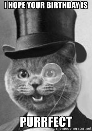 Monocle Cat - I hope your birthday is purrfect