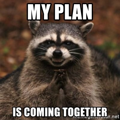 evil raccoon - My PLAN Is coming together