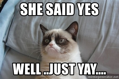 Grumpy cat good - she said yes well ..just yay....
