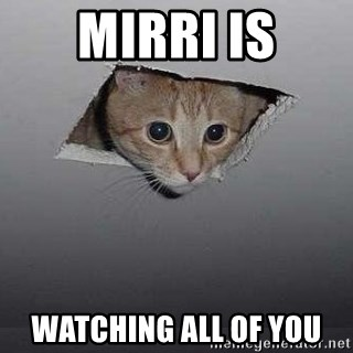 Ceiling cat - mirri is WATCHING ALL OF YOU