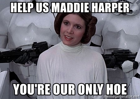 princess leia - Help us maddie harper You're our only hoe