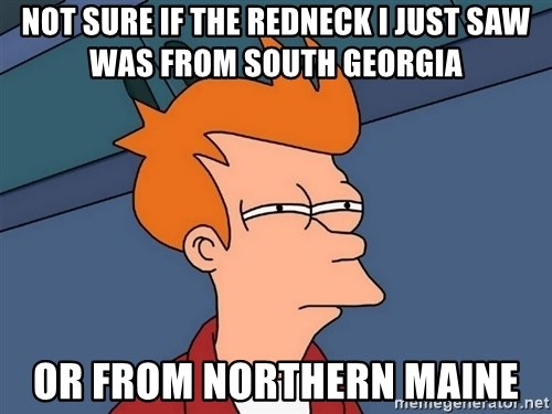 Futurama Fry - Not sure if the redneck I just saw was from South Georgia Or from Northern Maine
