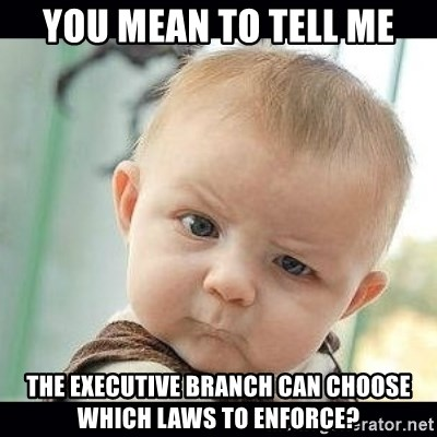 Skeptical Baby Whaa? - You Mean to tell me the executive branch can choose which laws to enforce?