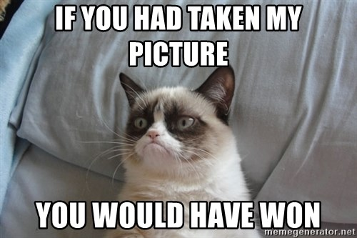 Grumpy cat good - If you had taken my picture you would have won