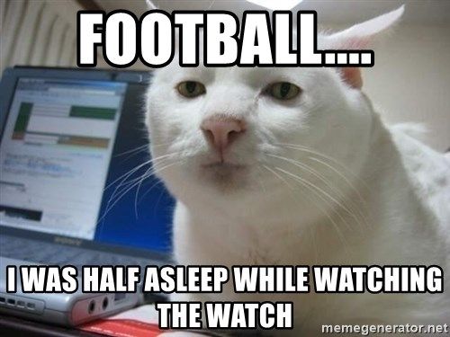 Serious Cat - football.... i was half asleep while watching the watch