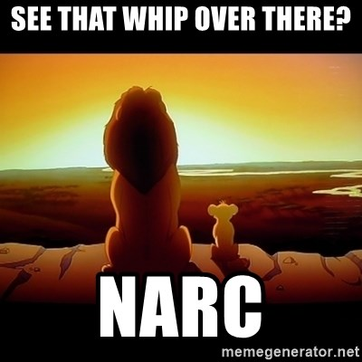 Simba - See thaT whip over there? Narc