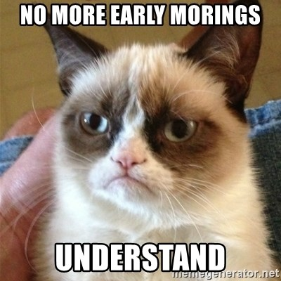 Grumpy Cat  - No More Early morings understand