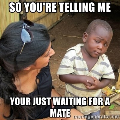 you mean to tell me black kid - SO YOU'RE TELLING ME  YOUR JUST WAITING FOR A MATE