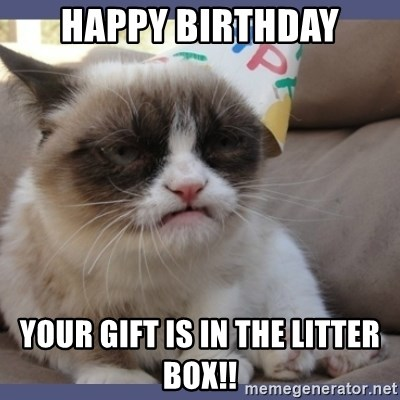 Birthday Grumpy Cat - happy birthday your gift is in the litter box!!