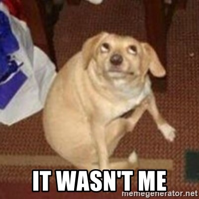 Oh You Dog -  IT WASN'T ME