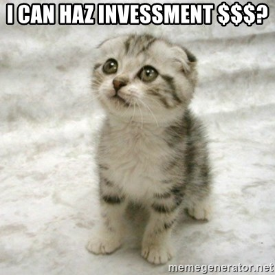 Can haz cat - I CAN HAZ INVESSMENT $$$?