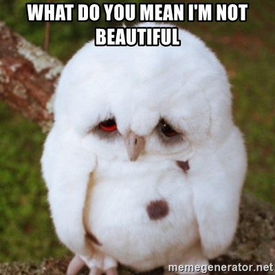 Sad Owl Baby - What do you Mean I'm not beautiful
