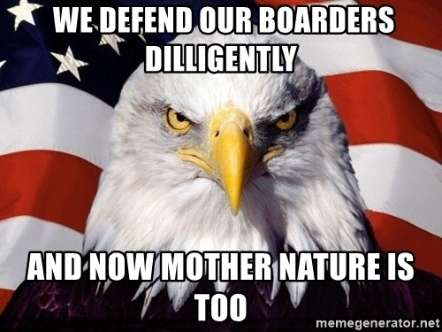 American Pride Eagle -  We defend our boarders dilligently And now mother nature is too