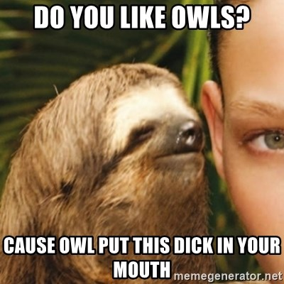 Whispering sloth - Do you like owls? cause owl put this dick in your mouth