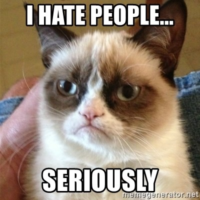 Grumpy Cat  - I HATE PEOPLE... SERIOUSLY