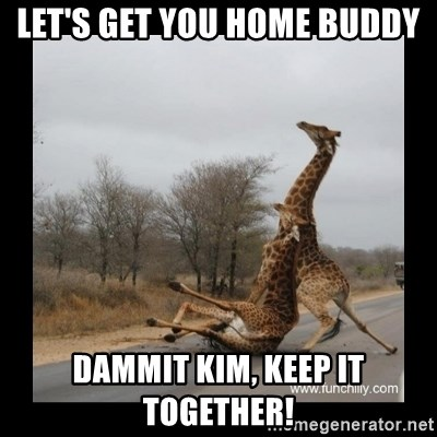 Trust Fall Giraffes - Let's get you home buddy dammit kim, keep it together!