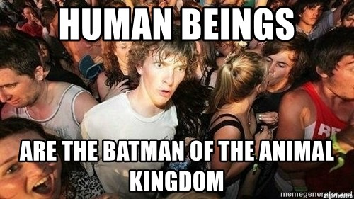 -Sudden Clarity Clarence - Human Beings Are the batman of the animal kingdom