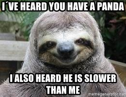 Sexual Sloth - i´ve heard you have a panda i also heard he is slower than me