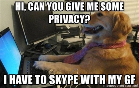 I have no idea what I'm doing - Dog with Tie - hi, can you give me some privacy? i have to skype with my gf